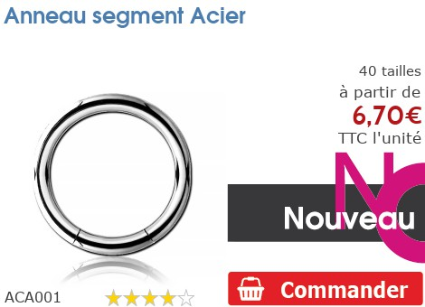 Anneau segment Acier