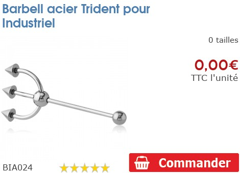 Barbell acier Trident pour Industriel