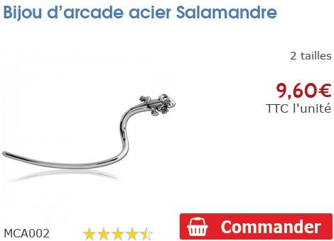 Bijou d'arcade acier Salamandre